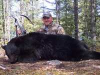 Dan Wallace - Manitoba black bear