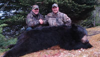 Dan Wallace - Newfoundland Black Bear