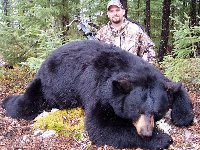 Karl Metzler - Saskatchewan Black Bear