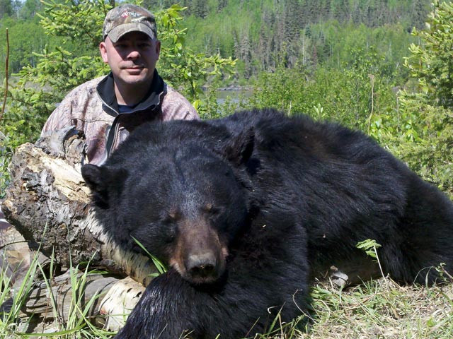 Troy Lauffer - Alberta Black Bear