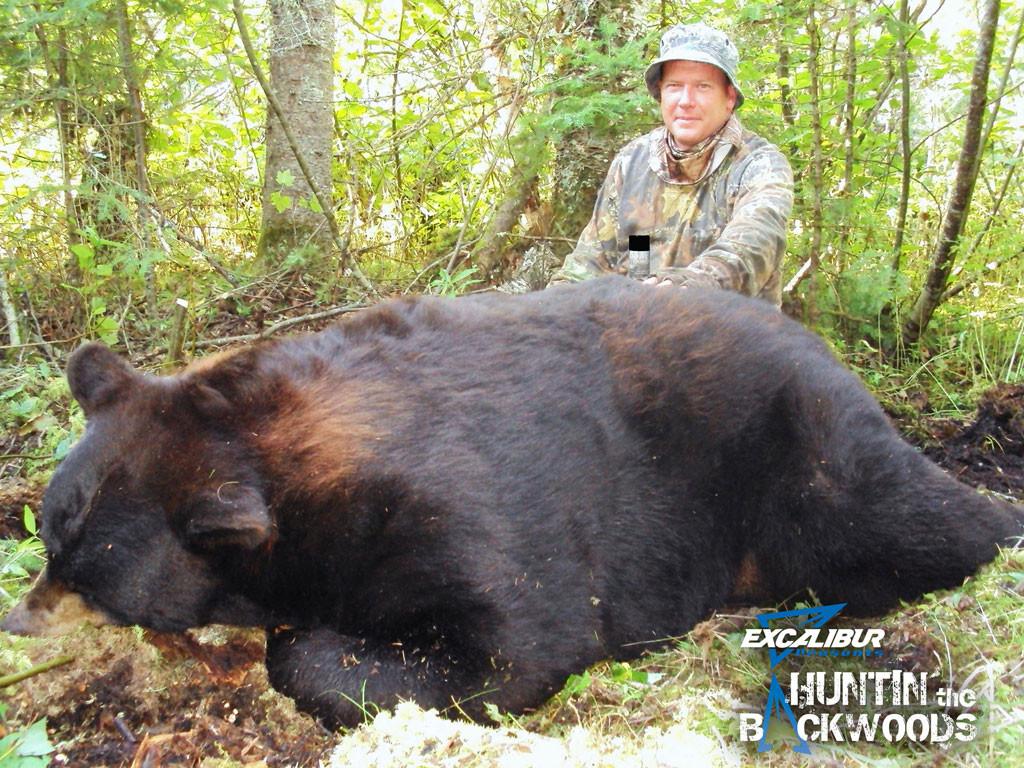 Scott Boehl - 776 Pound Manitoba Color-Phase Bear