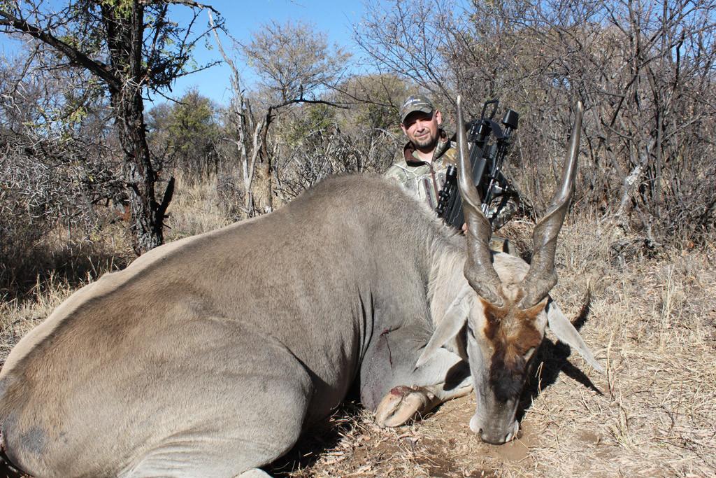 Karl Metzler - Eland, Koringkoppie Safaris