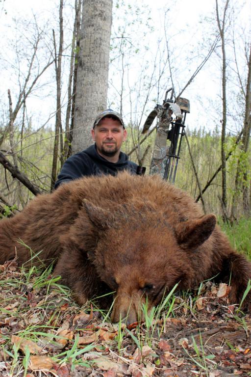 Karl Metzler - Alberta Color-Phase Bear