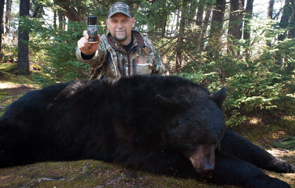 Karl Metzler Newfoundland Adventures Black Bear