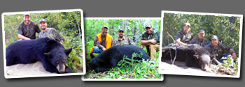 Bear Hunting at Dog Lake Resort