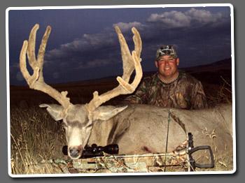 Jerry Niffenegger's Wyoming Mule Deer