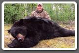 Paul Payne's Darton Bear
